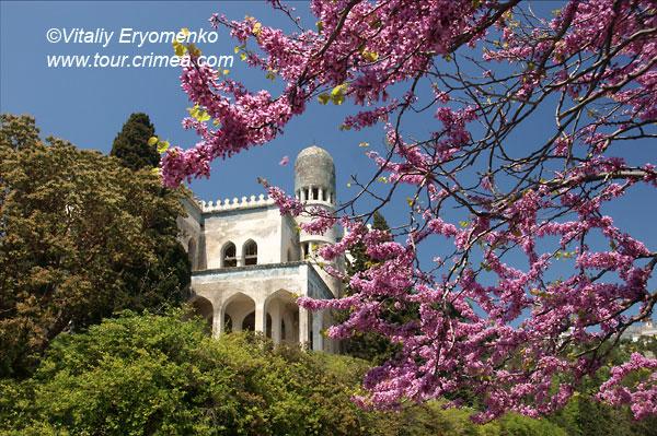 Немного теплого солнца холодной зимой или воспоминания о цветущем майском Крыме – фоторепортаж.