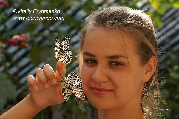 Выставки «Сад бабочек» и «Сад орхидей» в Никитском ботаническом саду – фоторепортаж.